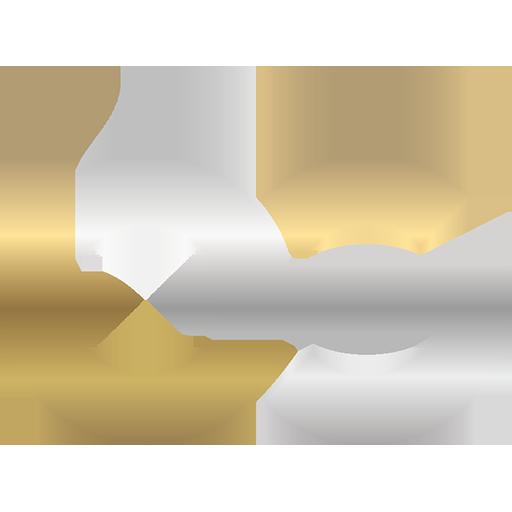 BS Automation AG